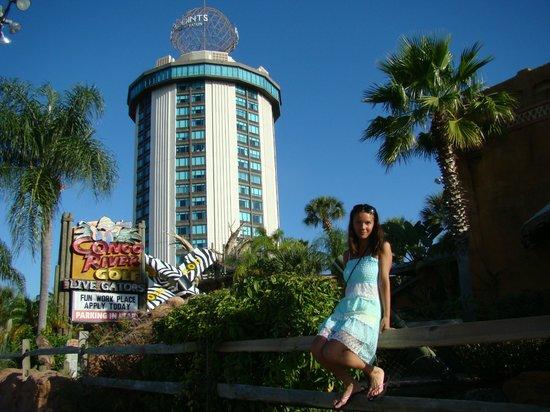 Four Points by Sheraton Orlando International Drive: Перед отелем
