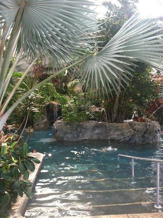 Grand Cascades Lodge : Tropical indoor atrium