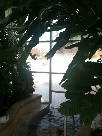 Grand Cascades Lodge: Through the plastic door to nature and sensory overload!!!