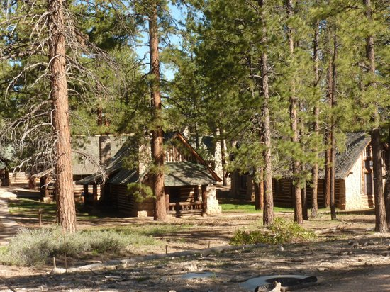 Cabins at the Bryce Canyon Lodge