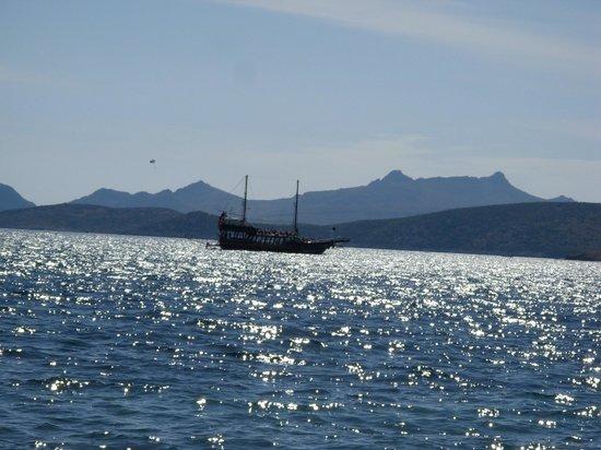 Labranda TMT Bodrum Resort : Море, солнце и яхты....
