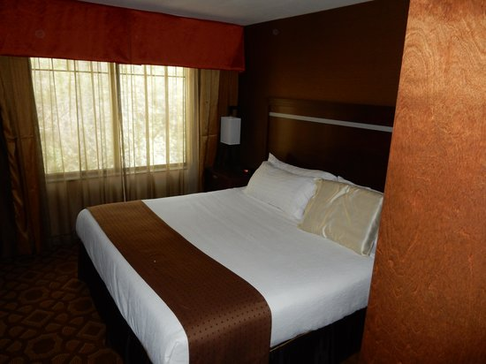 Holiday Inn Hotel & Suites Durango Central: Bedroom