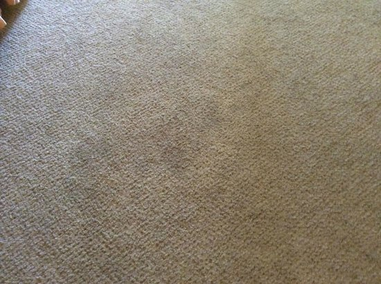 Tuscany Hills Resort: FILTHY carpet