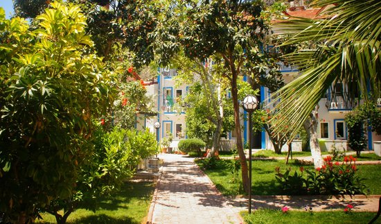 Akdeniz Beach Hotel: флора на территории