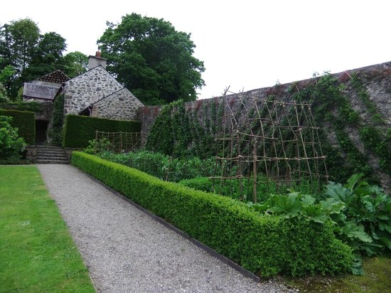 Plas Cadnant Hidden Gardens - Upper garden 9