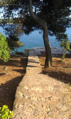 Park Plaza Verudela Pula: Sea stairs