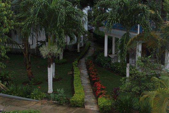 Negril Tree House Resort : Landscape