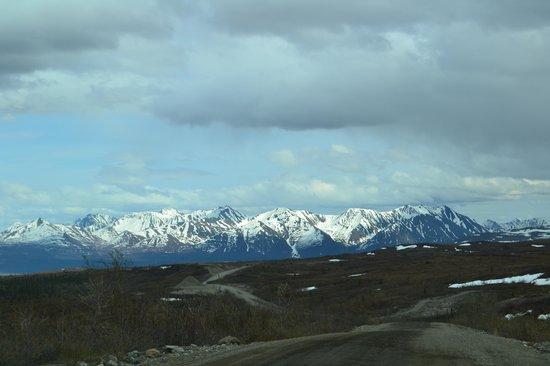 Alpine Creek Lodge: drive on Denali Highway to get to lodge