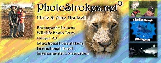 PhotoStrokes