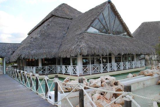 Royalton Hicacos Varadero Resort & Spa: Bar