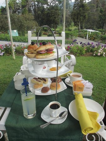 Jetwing St. Andrew's: High Tea on the lawn
