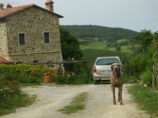 La Grencaia Bed & Breakfast : Welcome by Rambo