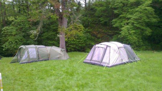 YHA Kings: Camping field