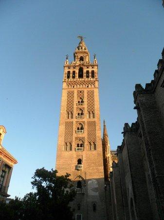 Torre Giralda : La hermosa torre