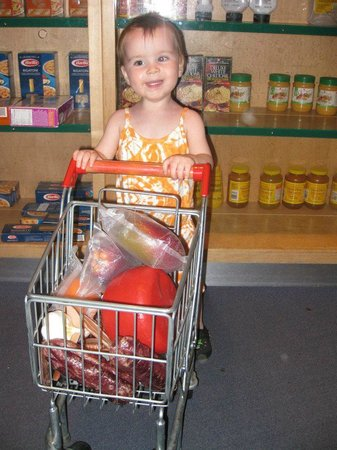 Ontario Science Centre: Daughter loved the little grocery store