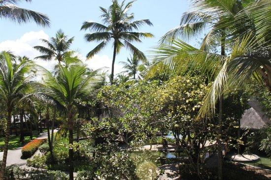 Nannai Resort & Spa: Vista Ap
