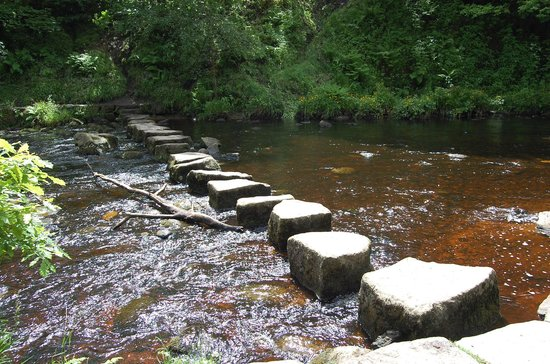 Hardcastle Crags: stepping stones
