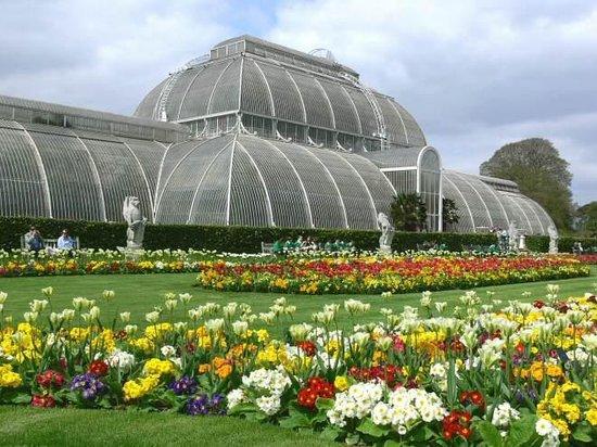 Royal Botanic Gardens Kew: The Palm House