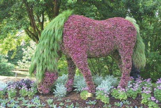Atlanta Botanical Gardens Photos Fasci Garden