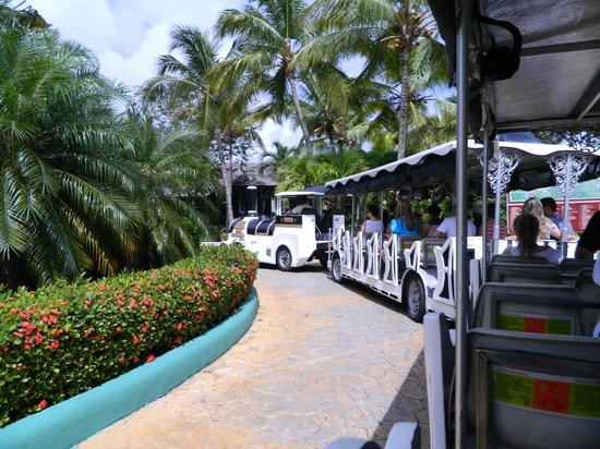 Meliá Caribe Tropical : Transporte interno hasta amanecer