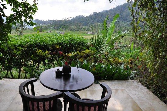 Surya Shanti Villa : Vue depuis la chambre