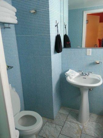 Beacon Hotel: Bathroom, hair dryiner included