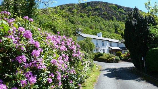 Bryn Eglwys Country House Hotel: Bryn Eglwys Hotel
