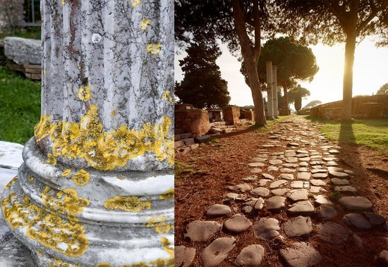 Rome Tours Experience: ....