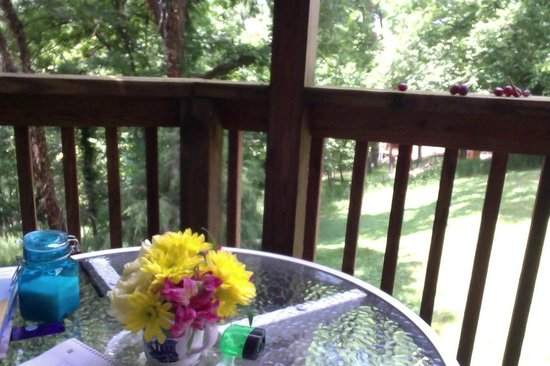 Hidden Springs Bed and Breakfast : Favorite writing spot on the deck