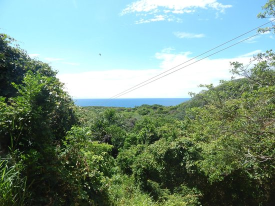 Roatan Christopher Tours: view from the zipline
