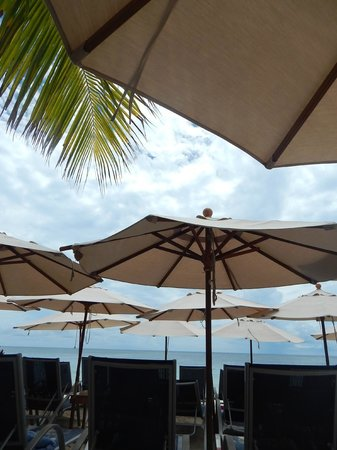 Roatan Christopher Tours: view from the beach restaurant lounge chairs