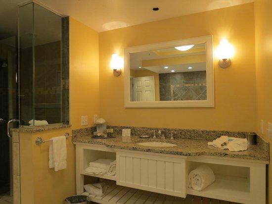 Watkins Glen Harbor Hotel: Bathroom