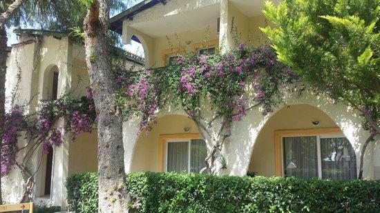 Labranda TMT Bodrum Resort : Very pretty gardens