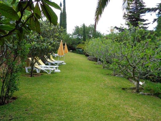 Hotel Casabela: Eine Liegewiese