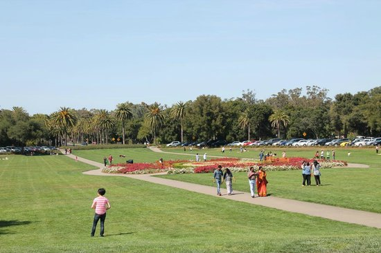 Stanford University: Sprawling grounds