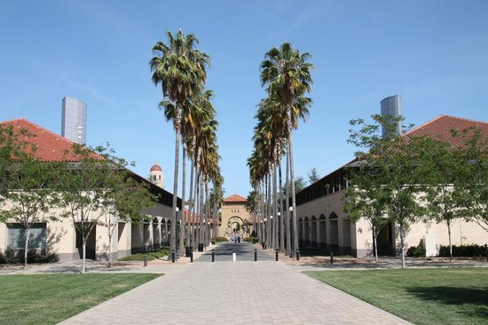 Stanford University: Main street