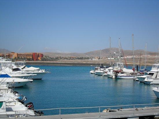 Barceló Fuerteventura Thalasso Spa: Marina