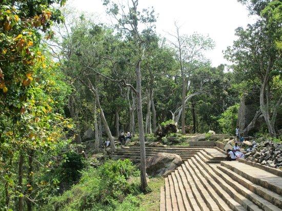 Ritigala Forest Monastery : Ritigala
