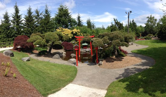 Point Defiance Park : The japanese garden