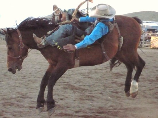 Royal Gorge Bridge and Park : Royal Gorge Rodeo and Blossom Festival, first weekend in May
