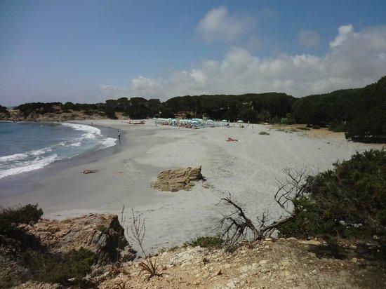 Tirreno Resort: Strand direkt vor dem Hotel
