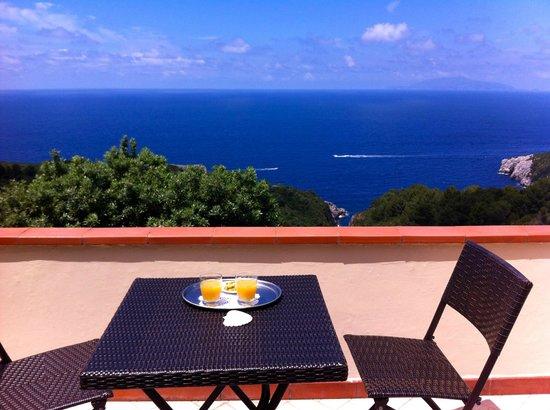B&B Cala del Rio Isola di Capri : Private terrace