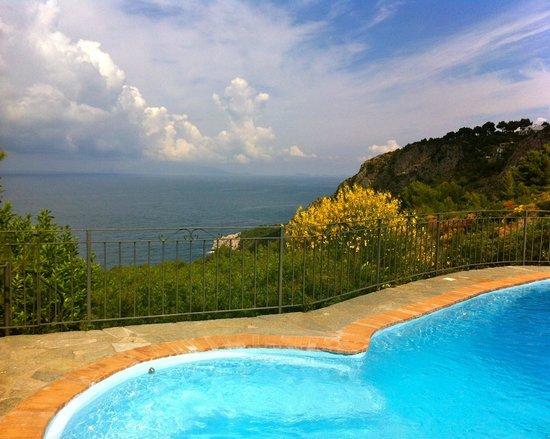 B&B Cala del Rio Isola di Capri: The pool