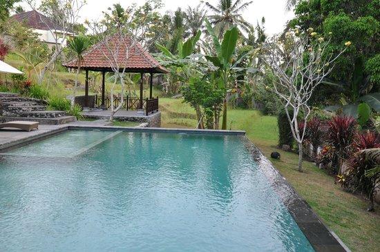 Puri Taman Sari: La piscine d'où vous pouvez apercevoir les rizières