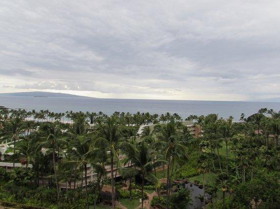 Grand Wailea - A Waldorf Astoria Resort: balcony