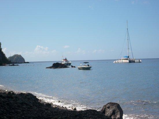 Dominica Botanic Gardens: snorkelling beach