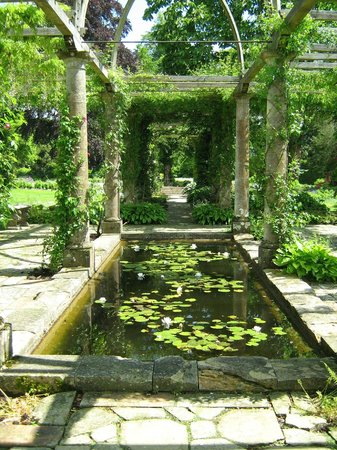 West Dean Gardens: Inside the pergola