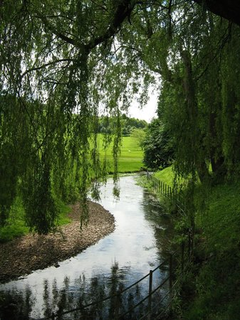 "West Dean Gardens: The ""River"""