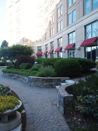 Mandarin Oriental, Washington DC: garden