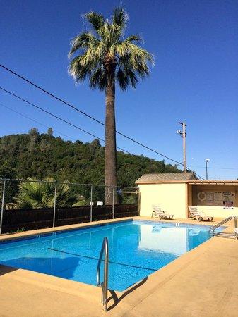 Miner's Motel : Swimming Pool